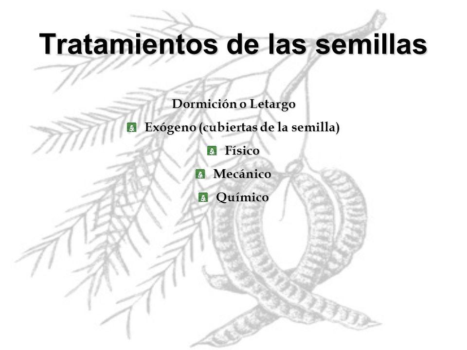 Dormición o Letargo Exógeno (cubiertas de la semilla) FísicoMecánicoQuímico Tratamientos de las semillas