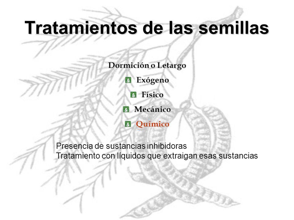Dormición o Letargo ExógenoFísicoMecánicoQuímico Tratamientos de las semillas Presencia de sustancias inhibidoras Tratamiento con líquidos que extraig