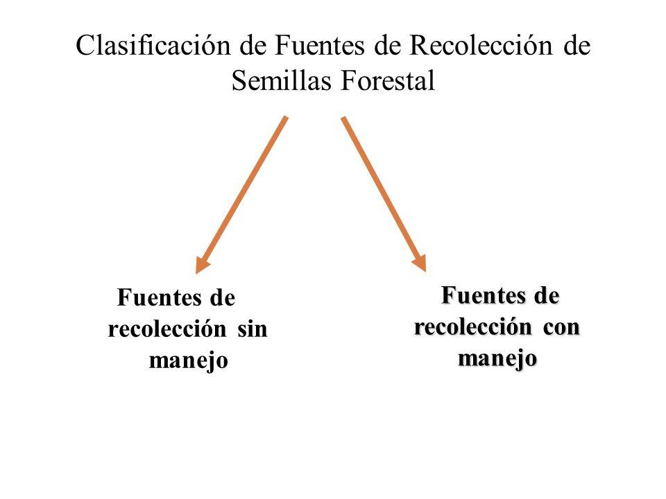 Clasificación de Fuentes de Recolección de Semillas Forestal Fuentes de recolección sin manejo Fuentes de recolección con manejo