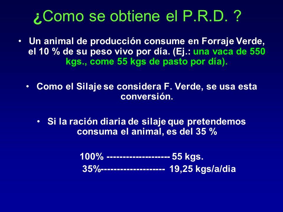 ¿Como se obtiene el P.R.D. ? Un animal de producción consume en Forraje Verde, el 10 % de su peso vivo por día. (Ej.: una vaca de 550 kgs., come 55 kg