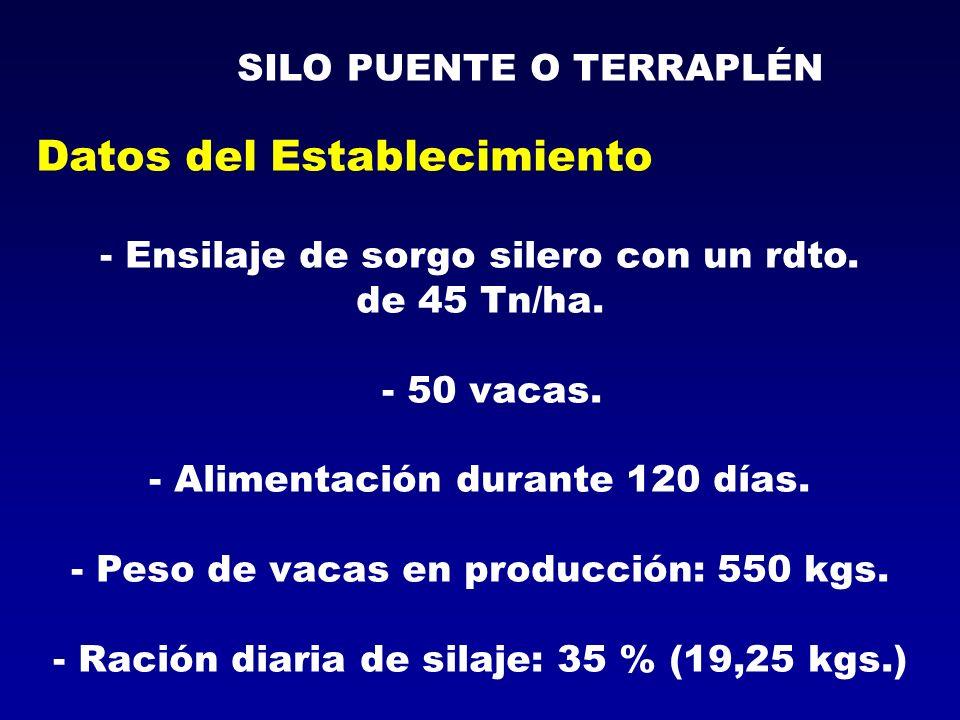 Datos del Establecimiento - Ensilaje de sorgo silero con un rdto. de 45 Tn/ha. - 50 vacas. - Alimentación durante 120 días. - Peso de vacas en producc