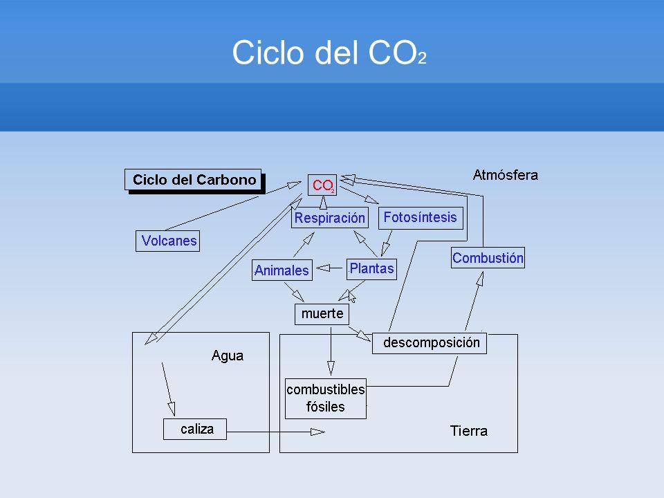 Ciclo del CO 2