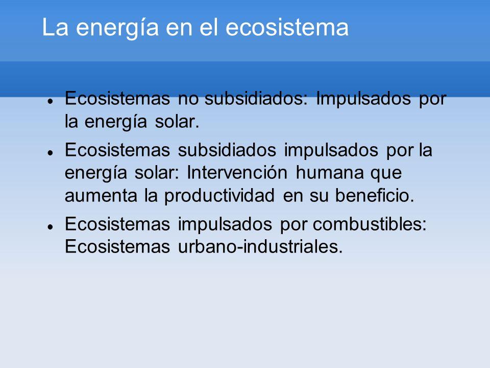 La energía en el ecosistema Ecosistemas no subsidiados: Impulsados por la energía solar. Ecosistemas subsidiados impulsados por la energía solar: Inte