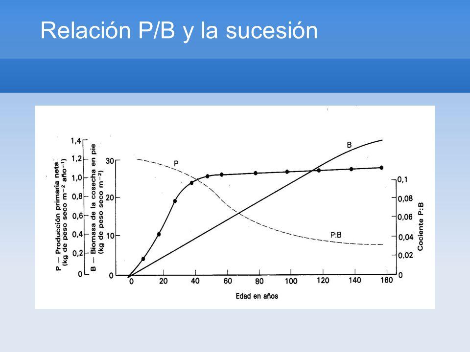 Relación P/B y la sucesión