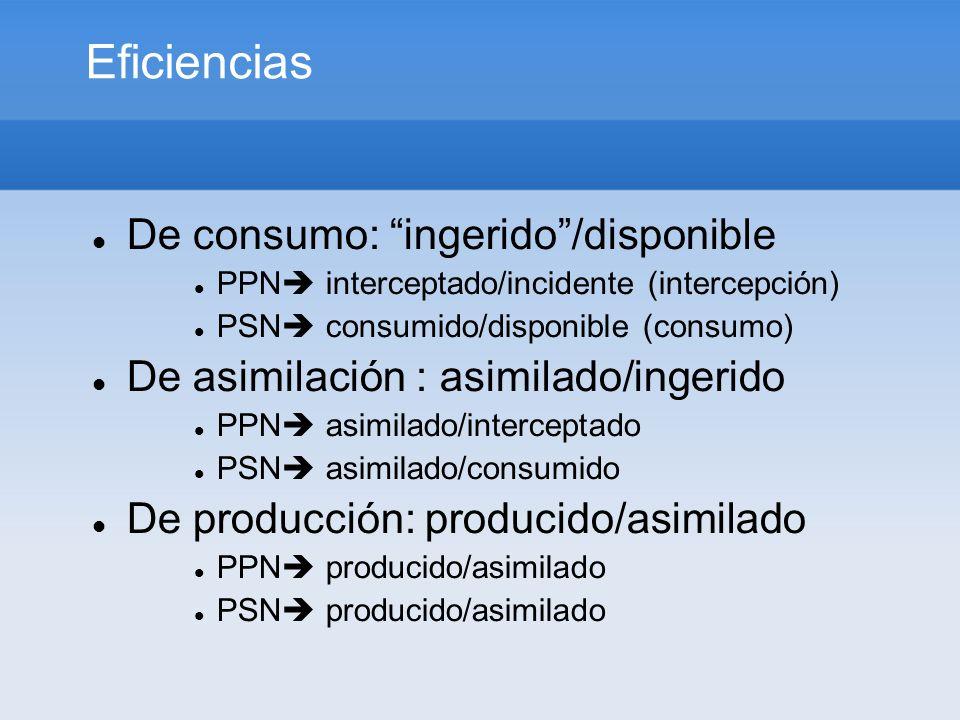 Eficiencias De consumo: ingerido/disponible PPN interceptado/incidente (intercepción) PSN consumido/disponible (consumo) De asimilación : asimilado/in