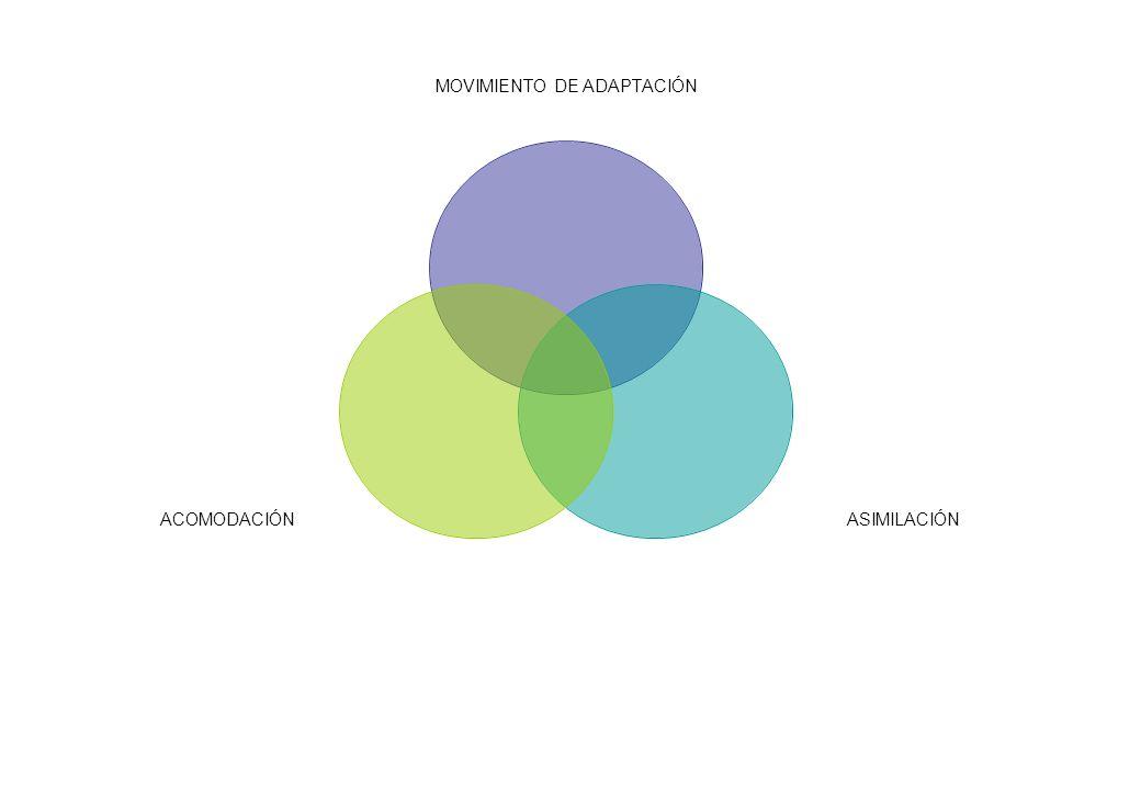 ACOMODACIÓN-ASIMILACIÓN TODO EL ORGANÍSMO TIENE LA POSIBILIDAD DE CAMBIAR O REORGANIZAR ESTRUCTURAS A PARTIR DE LAS YA EXISTENTE PARA ADAPTARSE CON UNA CIERTA PLASTICIDAD A LOS ELEMENTOS DEL MEDIO EXTERNO AL MISMO TIEMPO QUE TIENE LA CAPACIDAD DE DETECTARLOS, ANALIZARLOS TOMARLOS, INCORPORARLOS Y TRANSFORMARLOS.