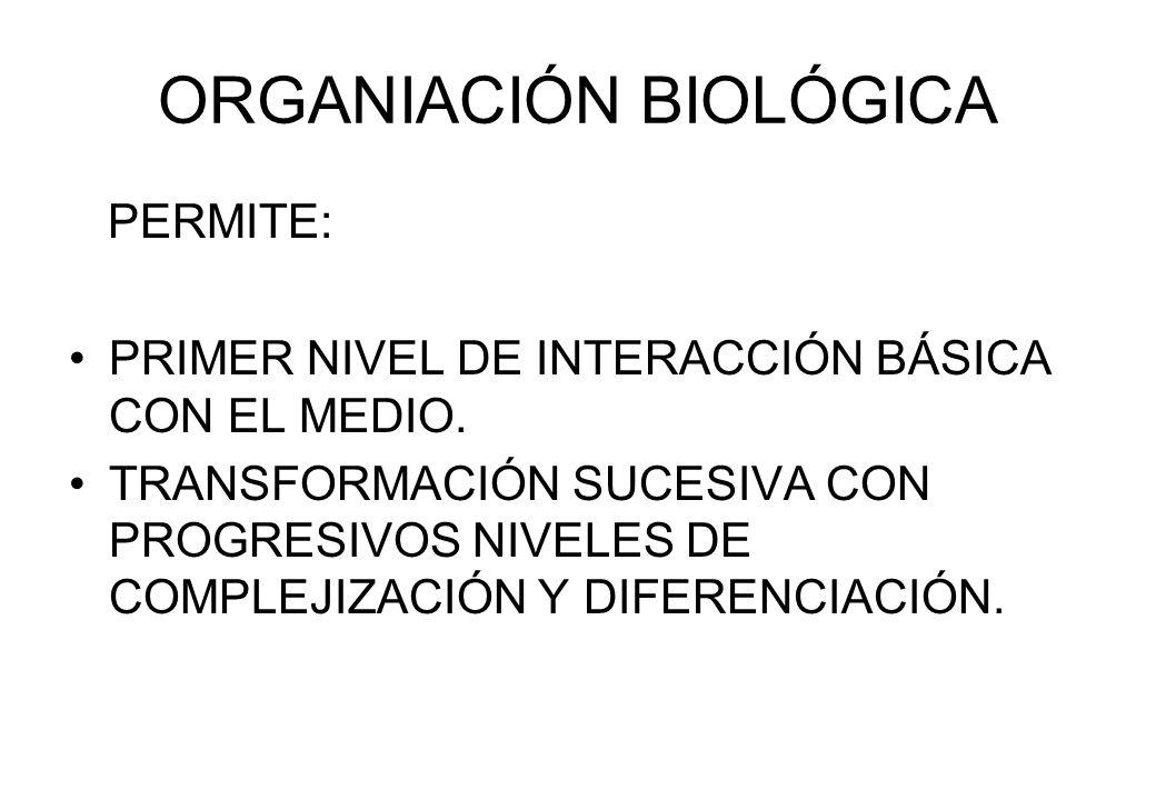 ORGANIACIÓN BIOLÓGICA PERMITE: PRIMER NIVEL DE INTERACCIÓN BÁSICA CON EL MEDIO. TRANSFORMACIÓN SUCESIVA CON PROGRESIVOS NIVELES DE COMPLEJIZACIÓN Y DI