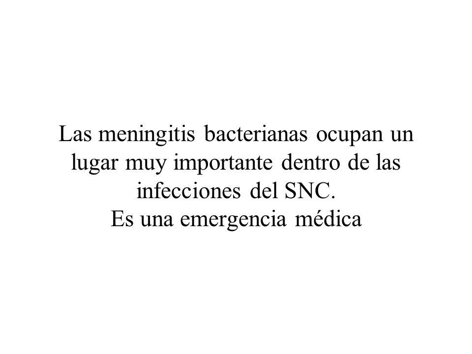 Las meningitis bacterianas ocupan un lugar muy importante dentro de las infecciones del SNC. Es una emergencia médica