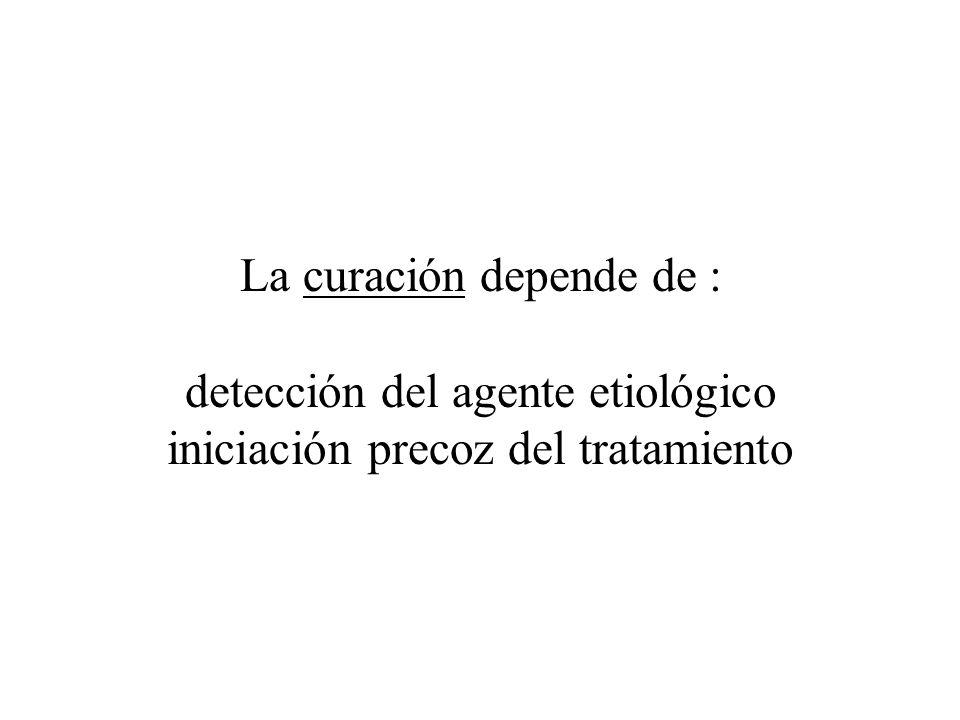 La curación depende de : detección del agente etiológico iniciación precoz del tratamiento