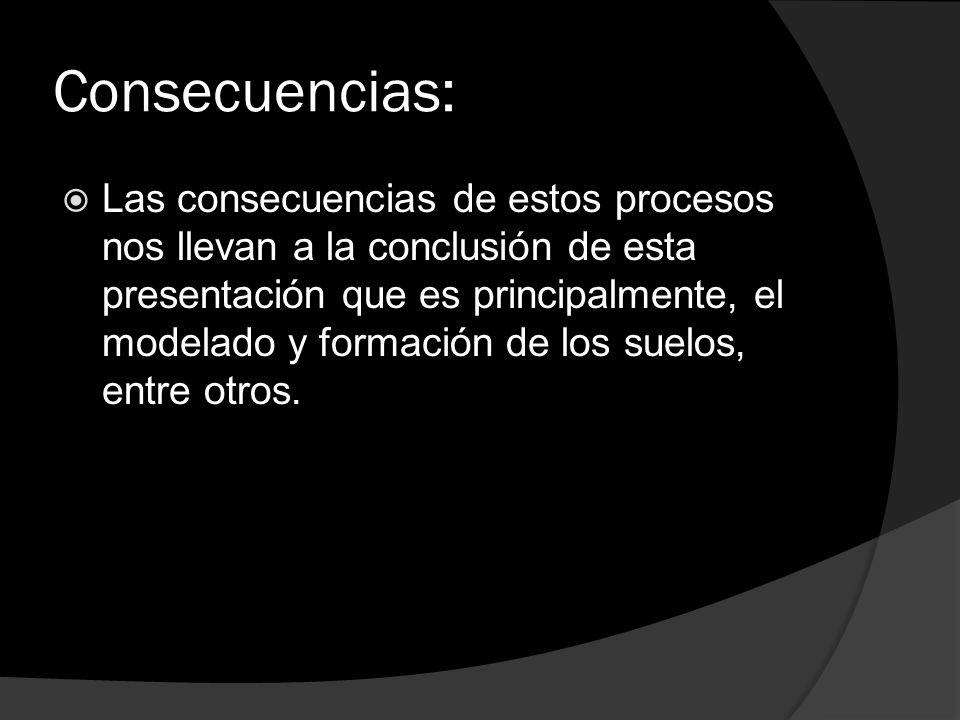 Consecuencias: Las consecuencias de estos procesos nos llevan a la conclusión de esta presentación que es principalmente, el modelado y formación de l