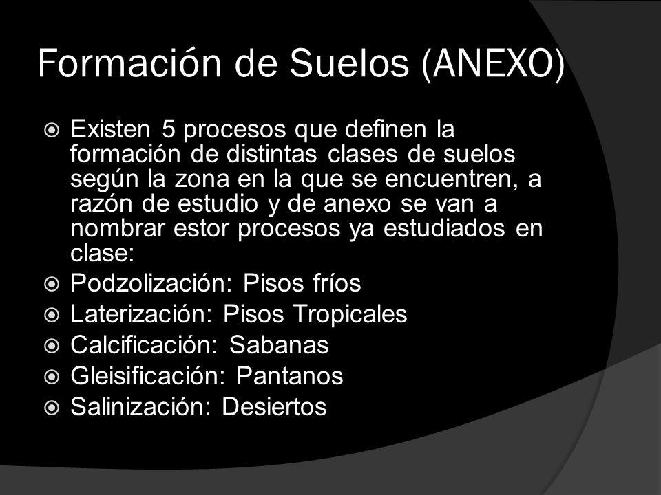 Formación de Suelos (ANEXO) Existen 5 procesos que definen la formación de distintas clases de suelos según la zona en la que se encuentren, a razón d