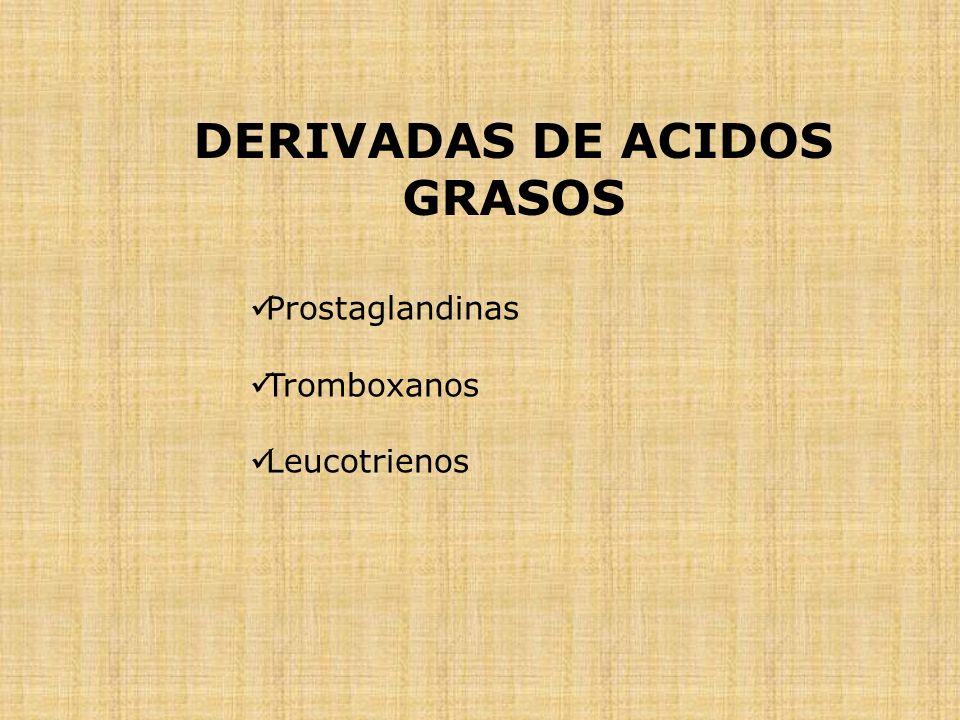 Prostaglandinas Tromboxanos Leucotrienos DERIVADAS DE ACIDOS GRASOS