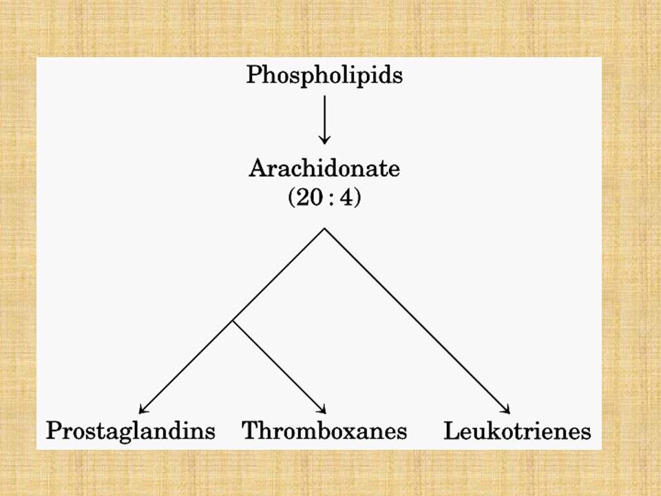 Factores reguladores Vasopresina Oxitocina ACTH MSH Glucagón Gastrina, Secretina, Pancreozimina Calcitonina PEPTÍDICAS
