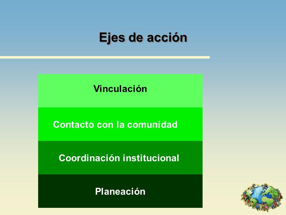 Planeación Comprenda el conjunto de las líneas de acción Visualice los obstáculos Delimite las áreas de intervención Realice diagnóstico de la comunidad Designe a la institución coordinadora Realice el plan de acción