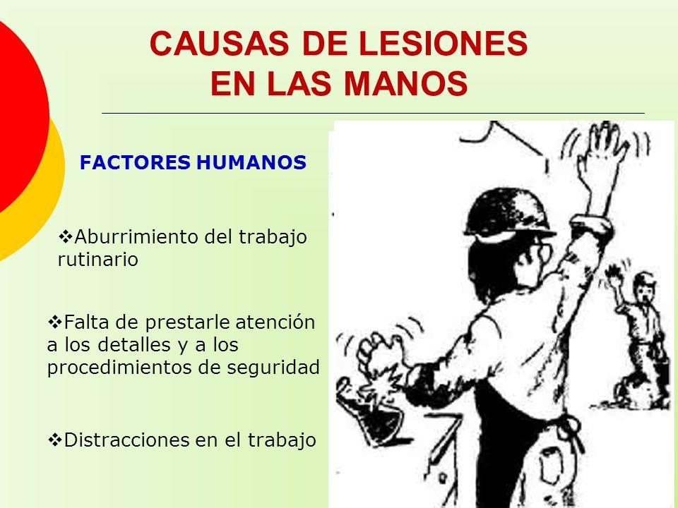CAUSAS DE LESIONES EN LAS MANOS FACTORES HUMANOS Aburrimiento del trabajo rutinario Falta de prestarle atención a los detalles y a los procedimientos