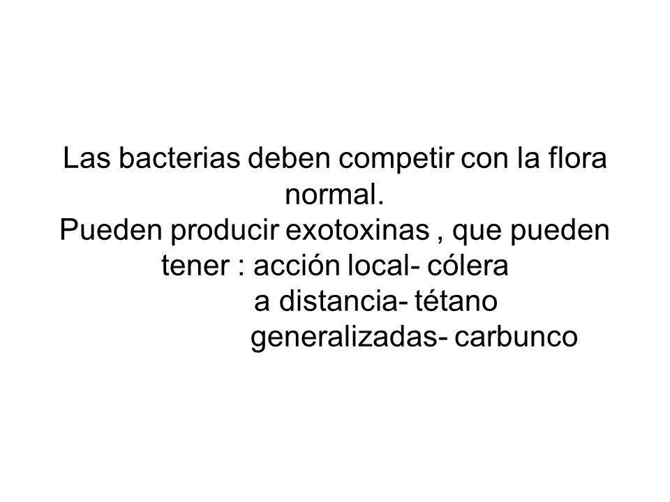 Las bacterias deben competir con la flora normal. Pueden producir exotoxinas, que pueden tener : acción local- cólera a distancia- tétano generalizada