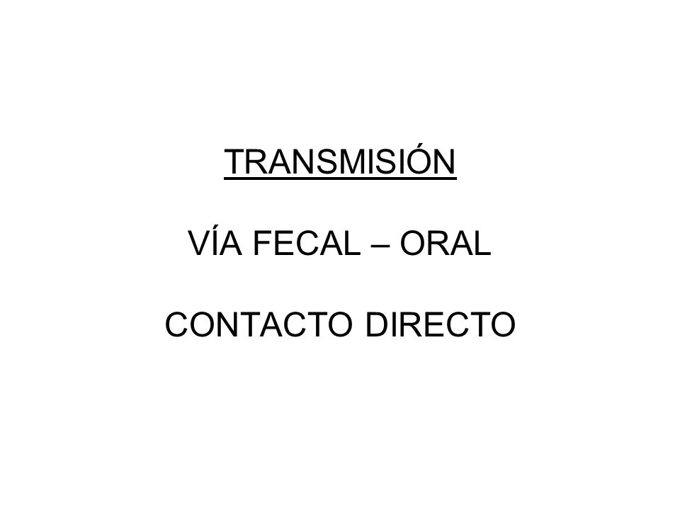 TRANSMISIÓN VÍA FECAL – ORAL CONTACTO DIRECTO