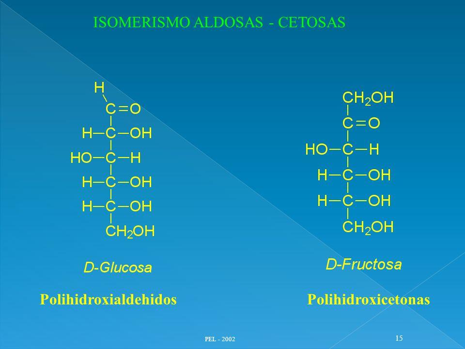 PEL - 2002 15 PolihidroxialdehidosPolihidroxicetonas ISOMERISMO ALDOSAS - CETOSAS