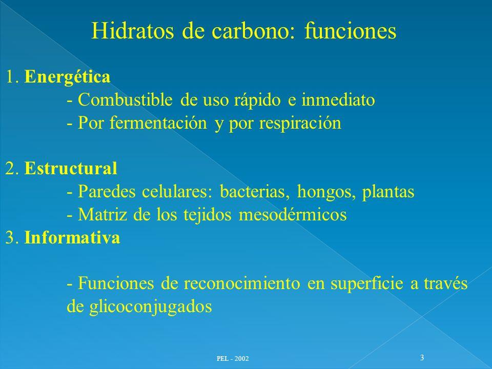 PEL - 2002 3 Hidratos de carbono: funciones 1. Energética - Combustible de uso rápido e inmediato - Por fermentación y por respiración 2. Estructural