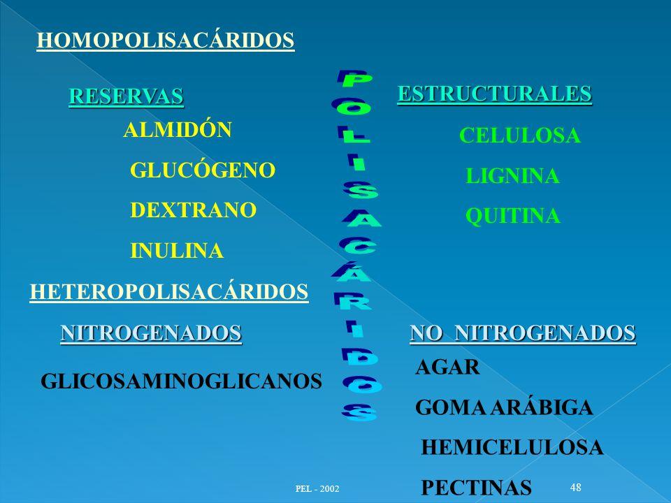 PEL - 2002 48 HOMOPOLISACÁRIDOS RESERVAS ESTRUCTURALES ALMIDÓN GLUCÓGENO DEXTRANO INULINA CELULOSA LIGNINA QUITINA HETEROPOLISACÁRIDOS NITROGENADOS GL