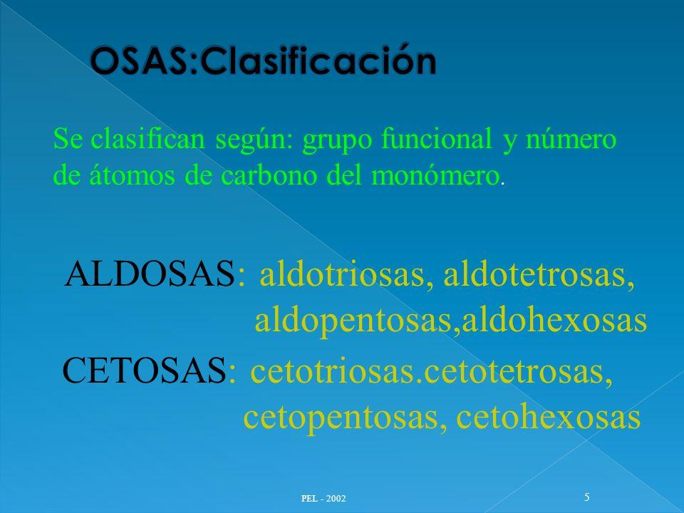5 ALDOSAS: aldotriosas, aldotetrosas, aldopentosas,aldohexosas CETOSAS: cetotriosas.cetotetrosas, cetopentosas, cetohexosas Se clasifican según: grupo