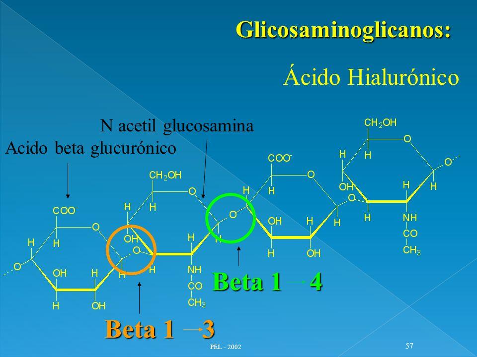 PEL - 2002 57 Glicosaminoglicanos: Ácido Hialurónico Beta 1 3 Beta 1 4 Acido beta glucurónico N acetil glucosamina