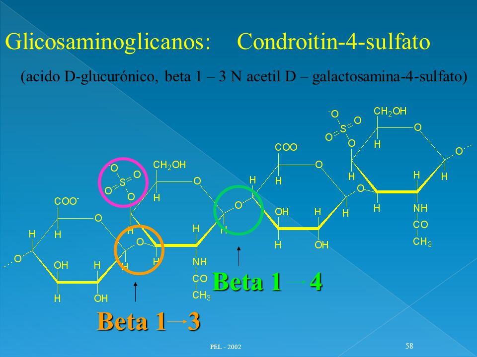PEL - 2002 58 Glicosaminoglicanos: Condroitin-4-sulfato (acido D-glucurónico, beta 1 – 3 N acetil D – galactosamina-4-sulfato) Beta 1 3 Beta 1 4