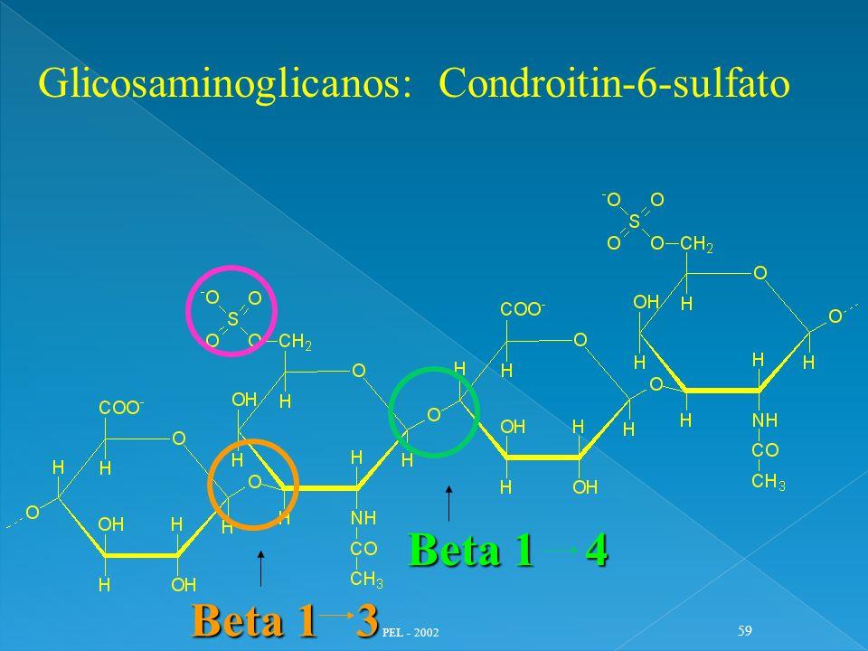 PEL - 2002 59 Glicosaminoglicanos: Condroitin-6-sulfato Beta 1 3 Beta 1 4