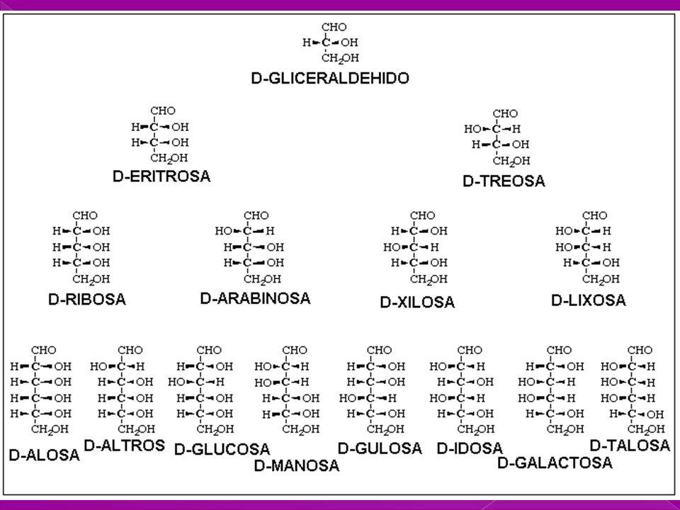 PEL - 2002 17 icl COHH CHHO COHH CH CH 2 OH CHOH O COHH CHHO COHH COHH CHO CH 2 OH COHH CHHO COHH CH CH 2 OH CHOH O Carbono anomérico Nuevo centro de asimetría en la D-Glucosa al formarse el co Formas cíclicas: Formación de hemiacetal interno ESTRUCTURAS CÍCLICAS PIRANOSA Y FURANOSA