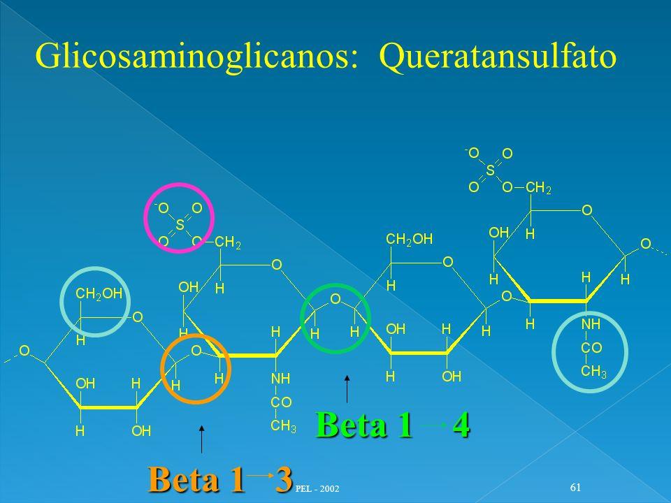 PEL - 2002 61 Glicosaminoglicanos: Queratansulfato Beta 1 4 Beta 1 3