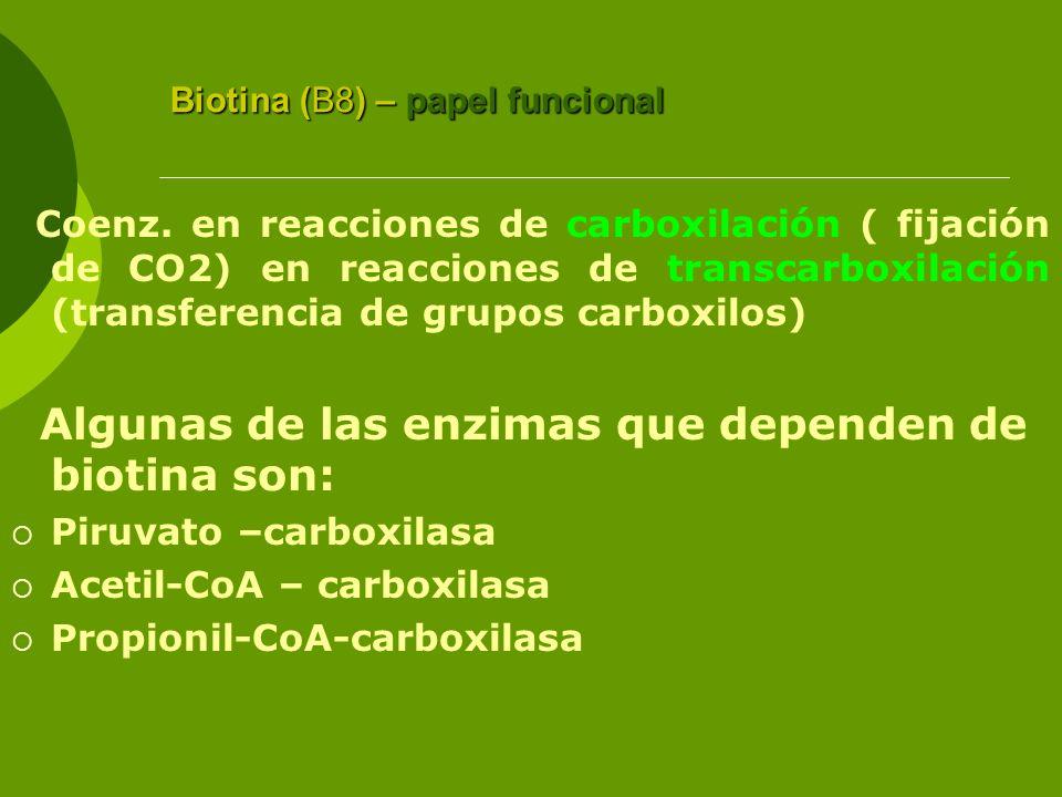 Biotina (B8) – papel funcional Coenz. en reacciones de carboxilación ( fijación de CO2) en reacciones de transcarboxilación (transferencia de grupos c