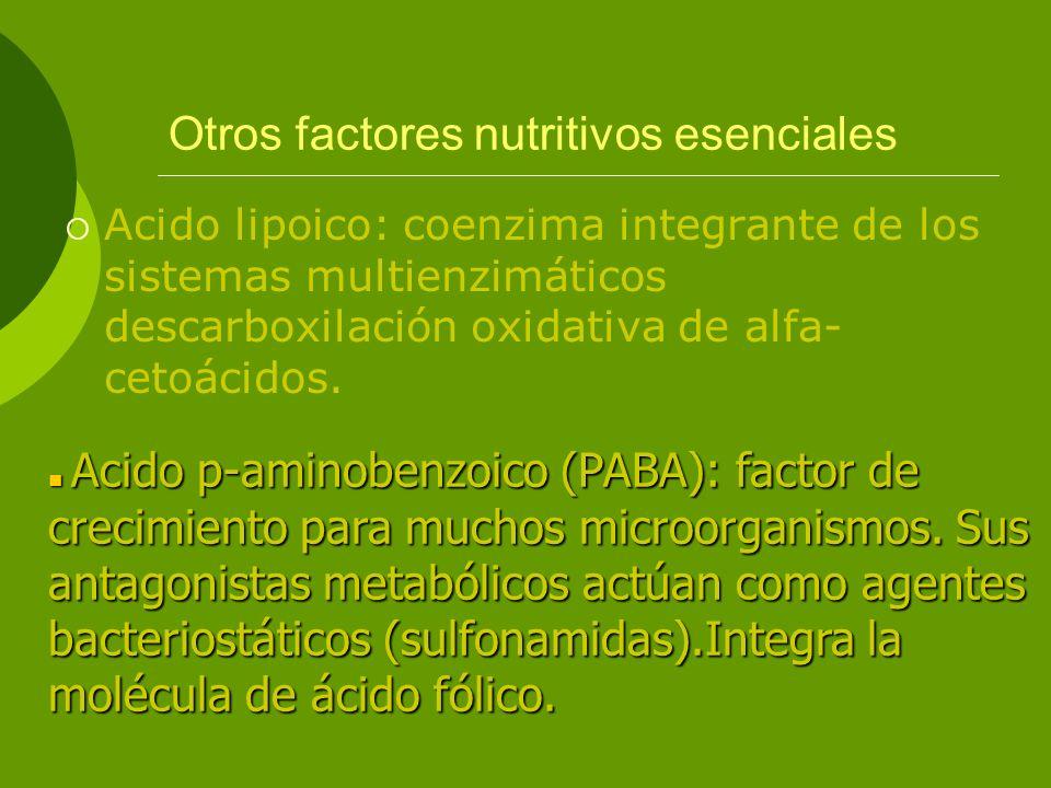 Otros factores nutritivos esenciales Acido lipoico: coenzima integrante de los sistemas multienzimáticos descarboxilación oxidativa de alfa- cetoácido
