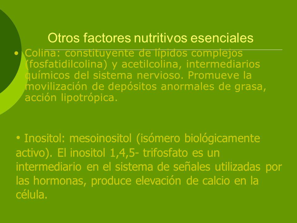 Otros factores nutritivos esenciales Colina: constituyente de lípidos complejos (fosfatidilcolina) y acetilcolina, intermediarios químicos del sistema