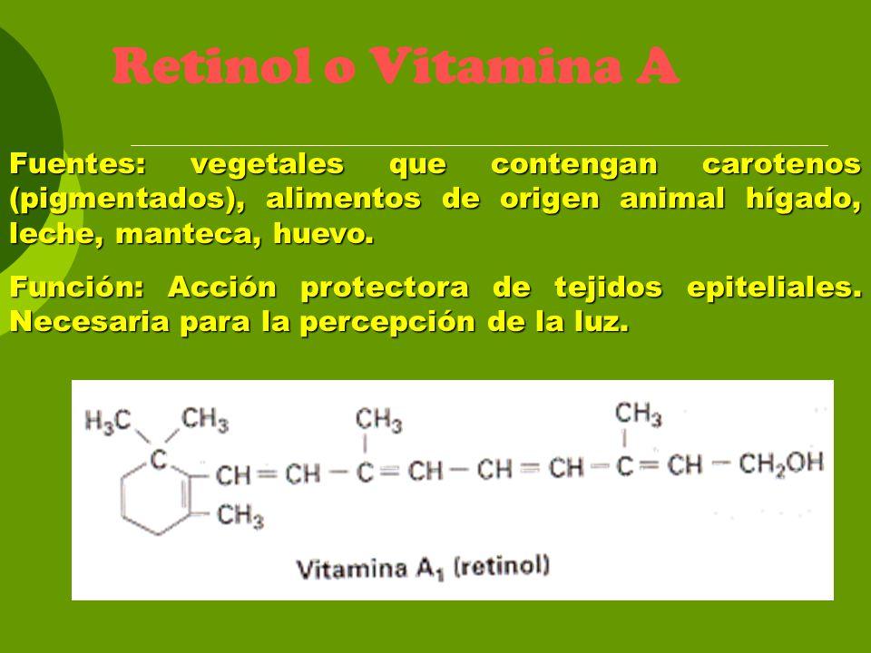 Retinol o Vitamina A Fuentes: vegetales que contengan carotenos (pigmentados), alimentos de origen animal hígado, leche, manteca, huevo. Función: Acci