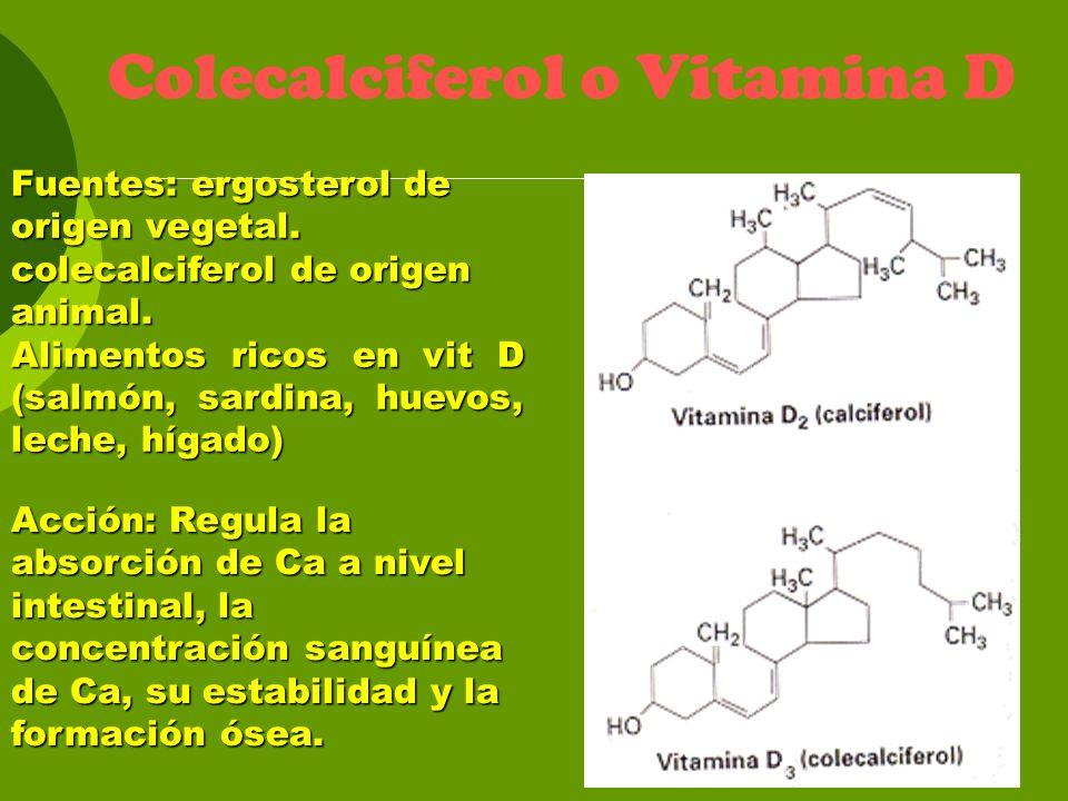 Colecalciferol o Vitamina D Fuentes: ergosterol de origen vegetal. colecalciferol de origen animal. Alimentos ricos en vit D (salmón, sardina, huevos,