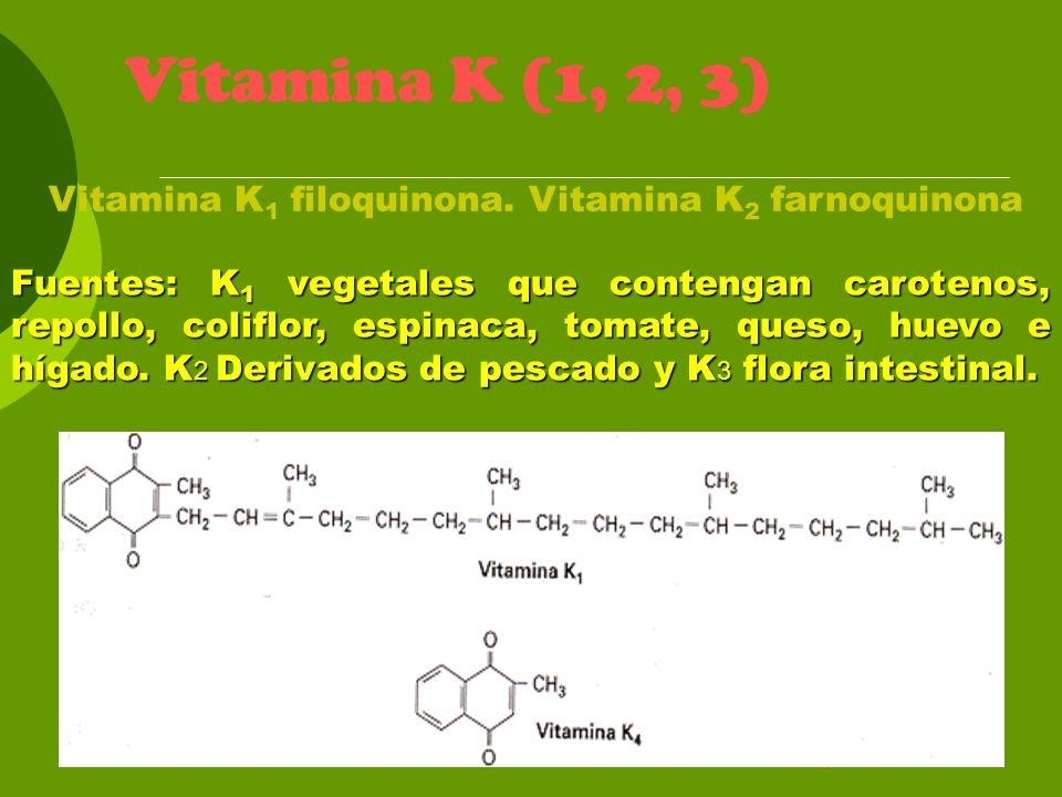 Vitamina K (1, 2, 3) Fuentes: K 1 vegetales que contengan carotenos, repollo, coliflor, espinaca, tomate, queso, huevo e hígado. K 2 Derivados de pesc