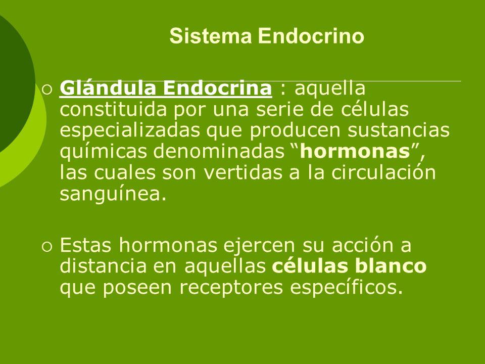 Sistema Endocrino Glándula Endocrina : aquella constituida por una serie de células especializadas que producen sustancias químicas denominadas hormon