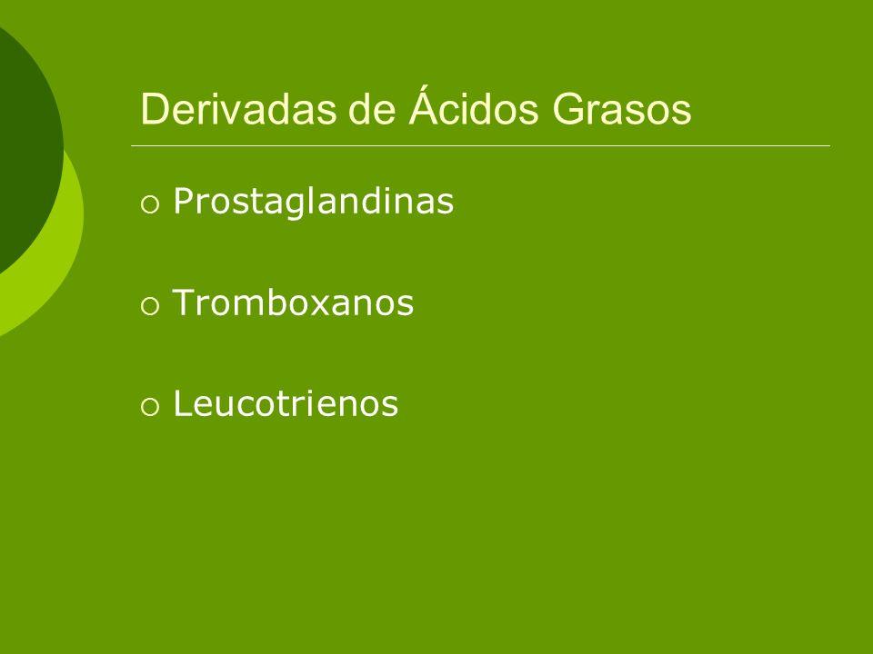 Derivadas de Ácidos Grasos Prostaglandinas Tromboxanos Leucotrienos
