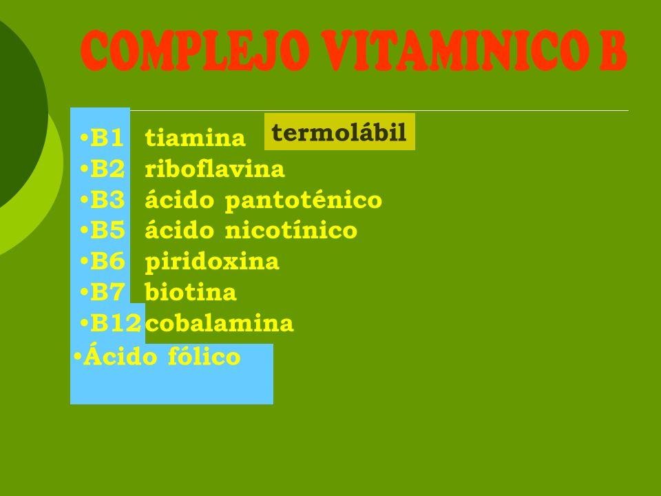 Tiamina B1 Vitamina B1, aneurina, factor antineurítico, factor antiberibérico Tiamina pirofosfato, TPP.