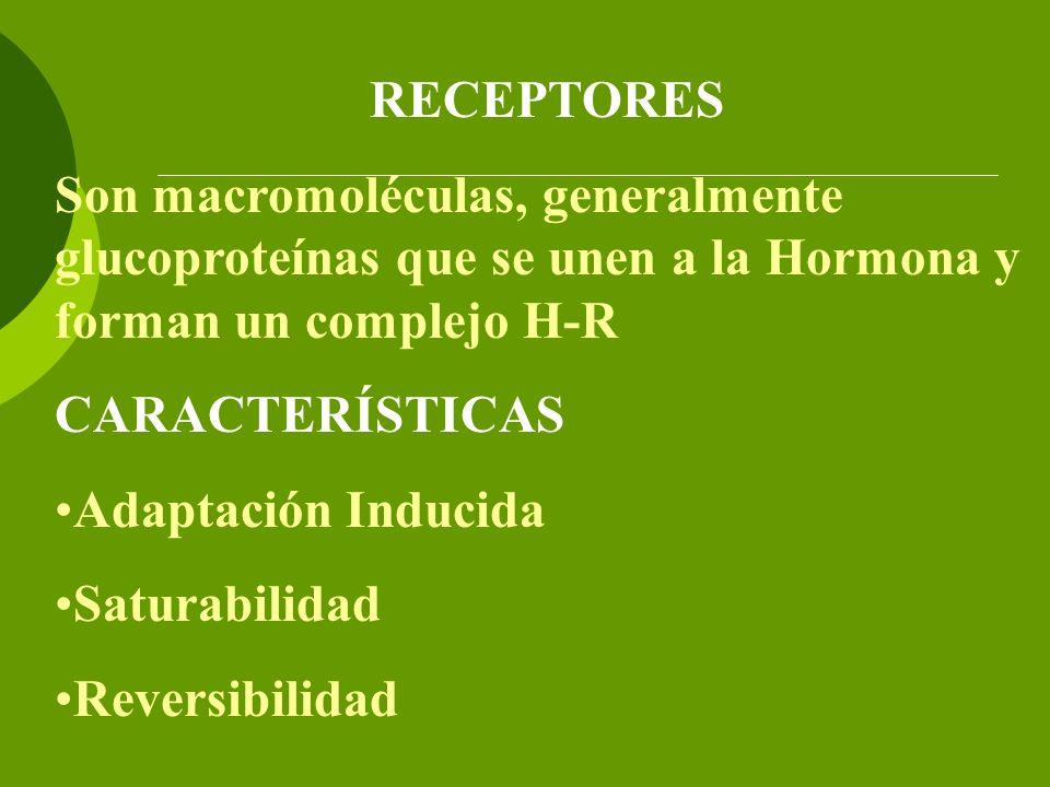 RECEPTORES Son macromoléculas, generalmente glucoproteínas que se unen a la Hormona y forman un complejo H-R CARACTERÍSTICAS Adaptación Inducida Satur