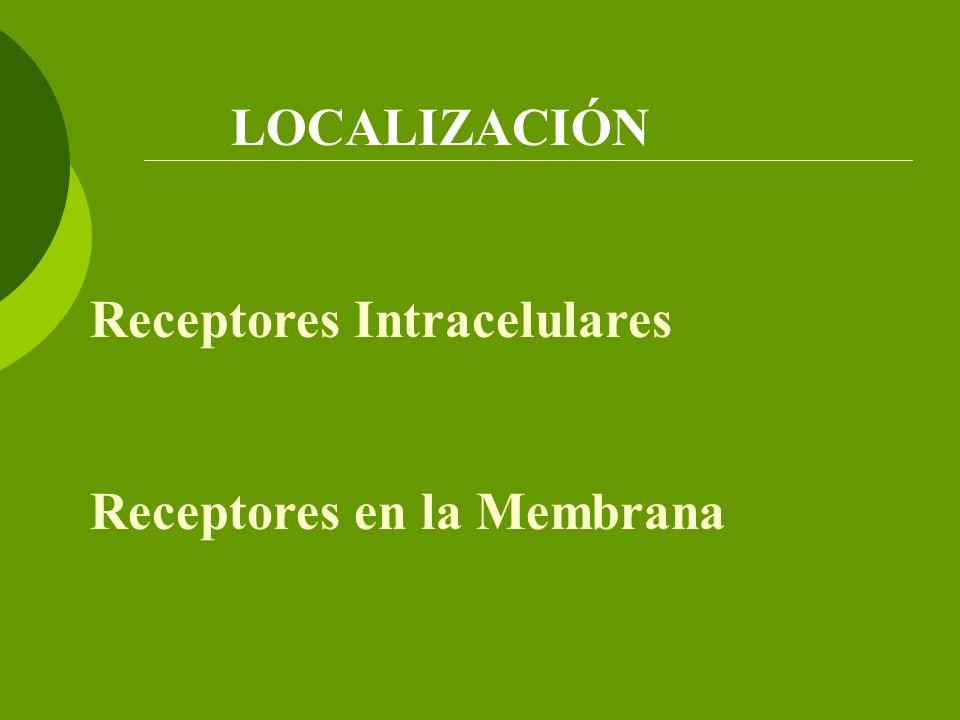 LOCALIZACIÓN Receptores Intracelulares Receptores en la Membrana