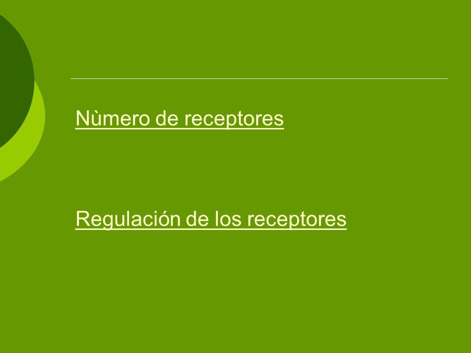 Nùmero de receptores Regulación de los receptores