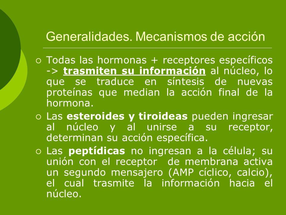 Generalidades. Mecanismos de acción Todas las hormonas + receptores específicos -> trasmiten su información al núcleo, lo que se traduce en síntesis d