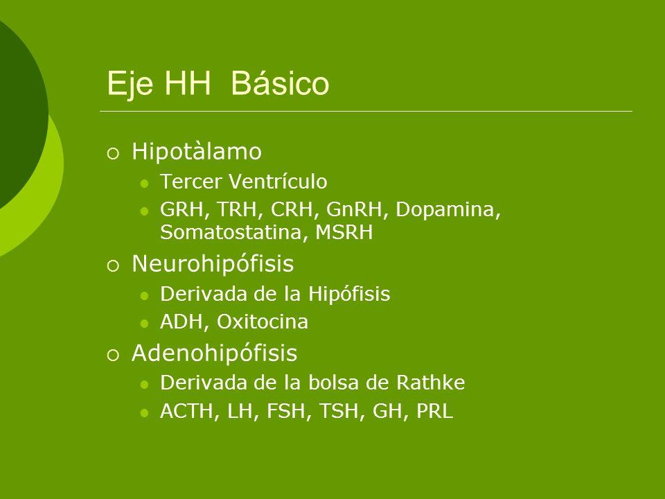Eje HH Básico Hipotàlamo Tercer Ventrículo GRH, TRH, CRH, GnRH, Dopamina, Somatostatina, MSRH Neurohipófisis Derivada de la Hipófisis ADH, Oxitocina A