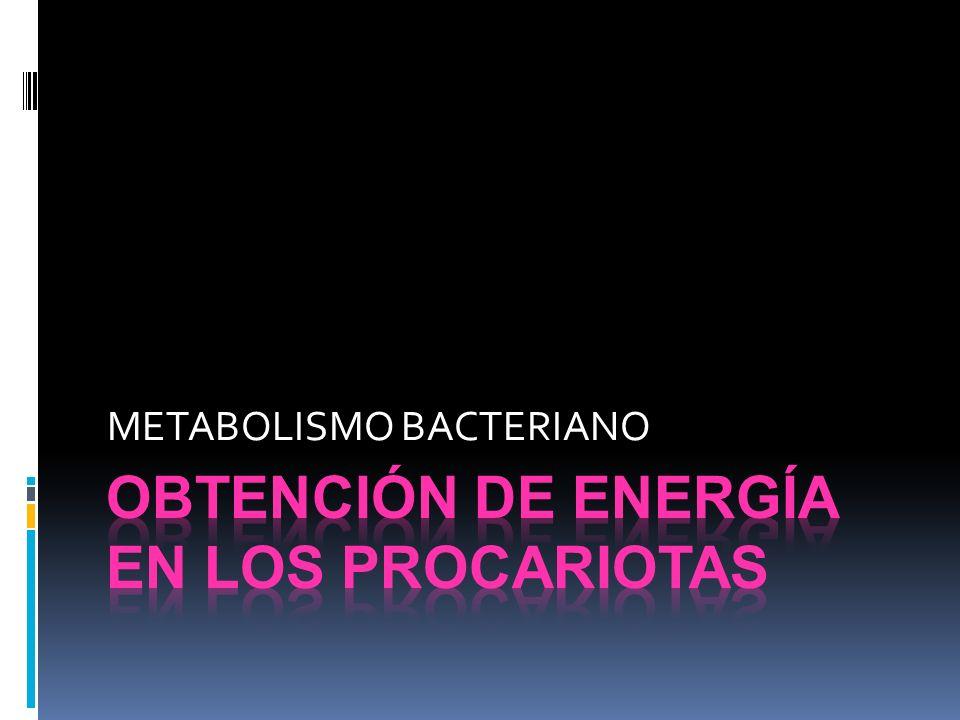 CAPTACIÓN DE ENERGÍA EN LAS BACTERIAS FOTOTROFAS FOTOFOSFORILACION