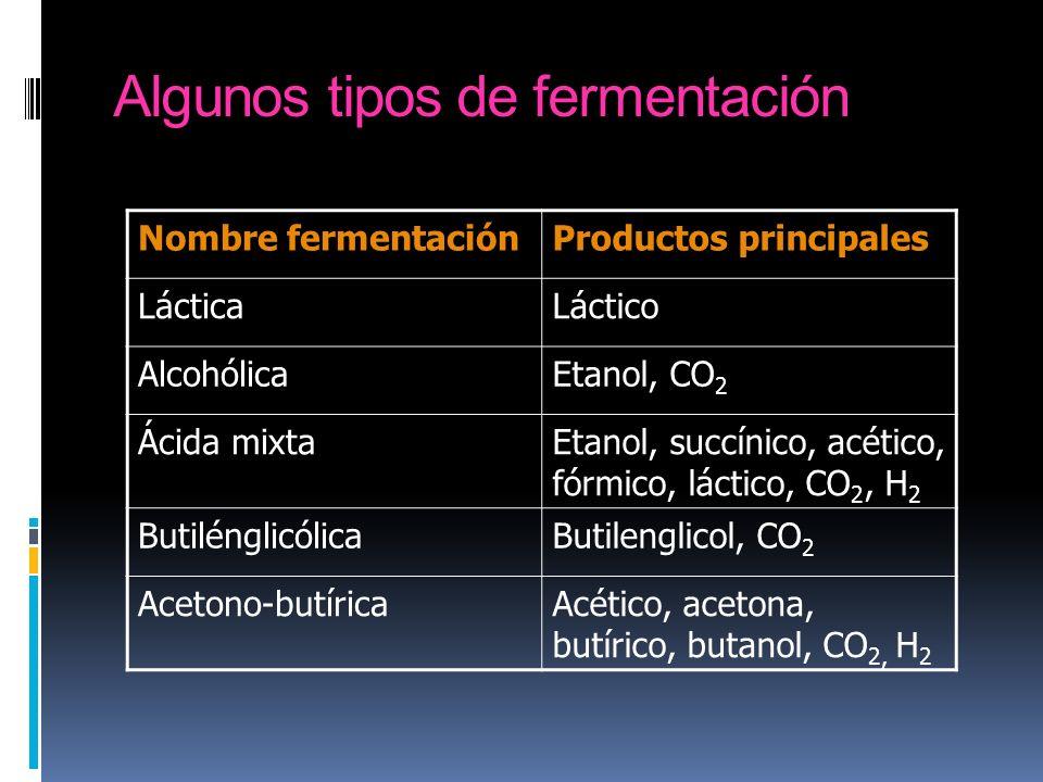 Algunos tipos de fermentación Nombre fermentaciónProductos principales LácticaLáctico AlcohólicaEtanol, CO 2 Ácida mixtaEtanol, succínico, acético, fó