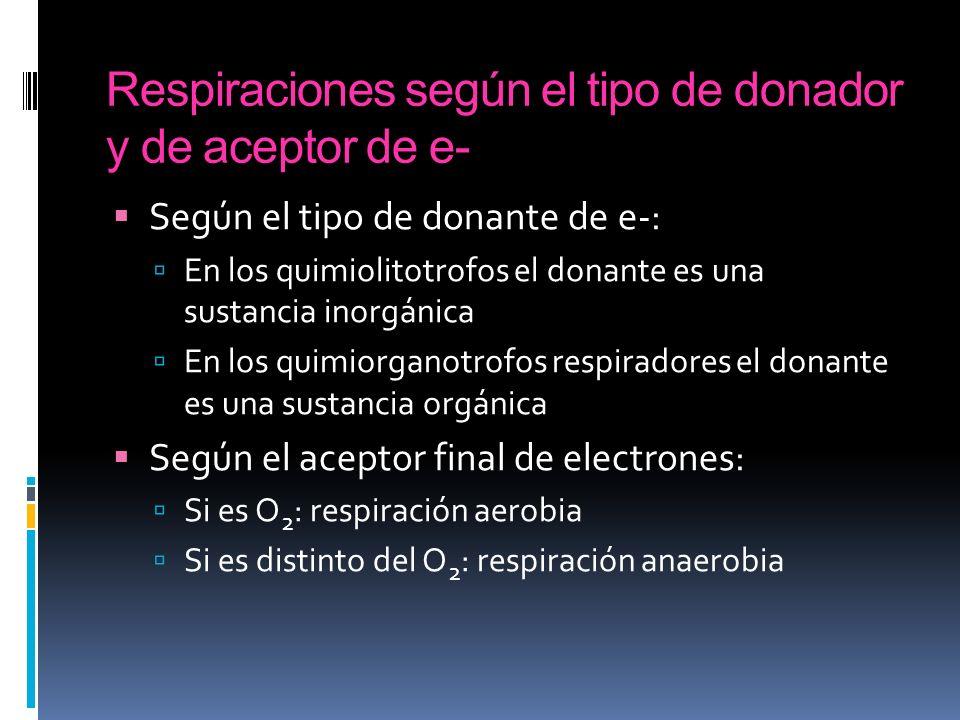 Respiraciones según el tipo de donador y de aceptor de e- Según el tipo de donante de e-: En los quimiolitotrofos el donante es una sustancia inorgáni