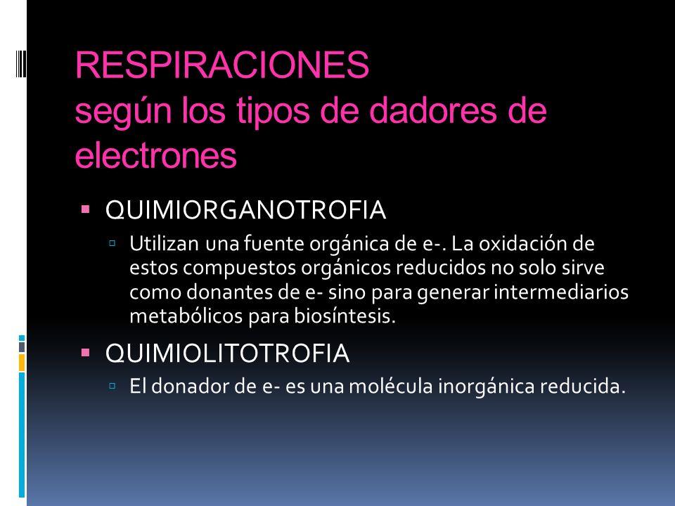 RESPIRACIONES según los tipos de dadores de electrones QUIMIORGANOTROFIA Utilizan una fuente orgánica de e-. La oxidación de estos compuestos orgánico