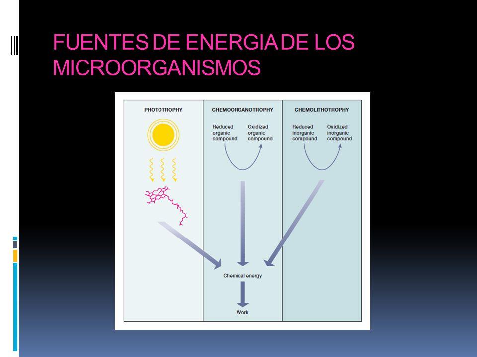 Tipos de metabolismos energéticos Energía de sustancias químicas quimiotrofía Quimiolitotrofía: energía química a partir de sustancias inorgánicas Quimioorganotrofía: energía química a partir de sustancias orgánicas Energía de radiaciones fototrofía Fotolitotrofía: captación de energía lumínica con nutrición exclusiva a partir de sustancias inorgánicas Fotoorganotrofía: captación de energía lumínica con requerimiento de sustancias orgánicas
