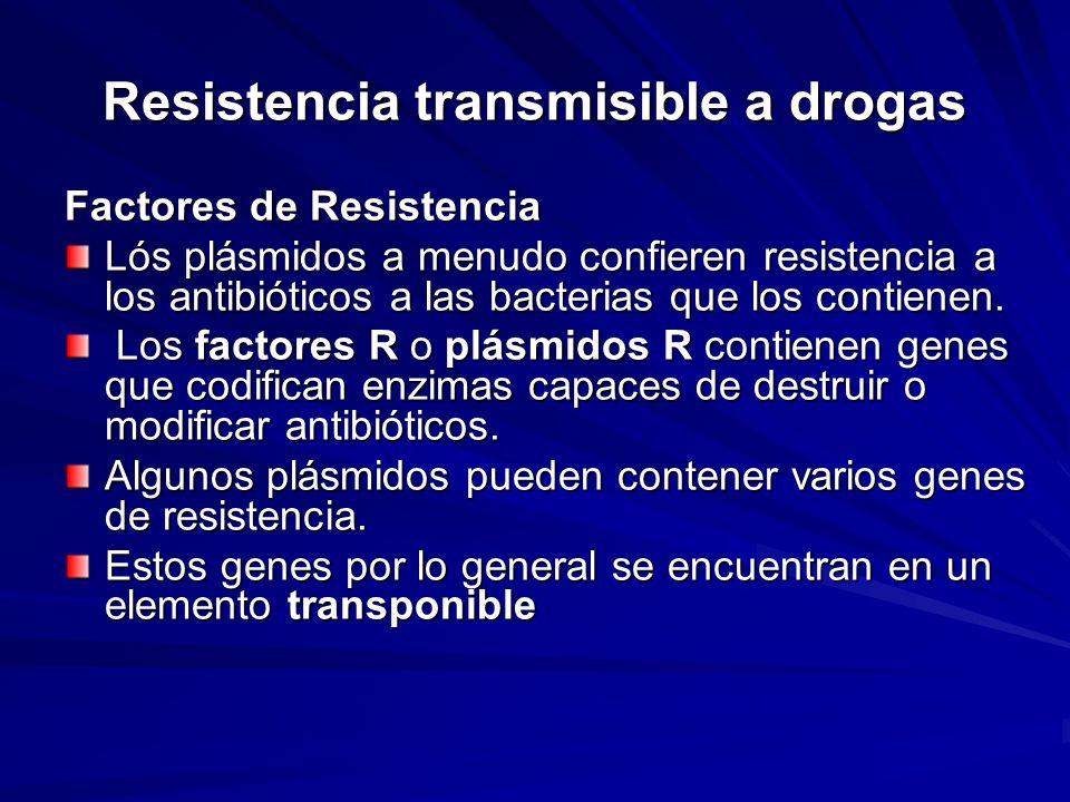 Resistencia transmisible a drogas Factores de Resistencia Lós plásmidos a menudo confieren resistencia a los antibióticos a las bacterias que los cont